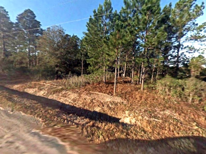 Mobiles Ok, Great Flagler Estates : Hastings : Saint Johns County : Florida