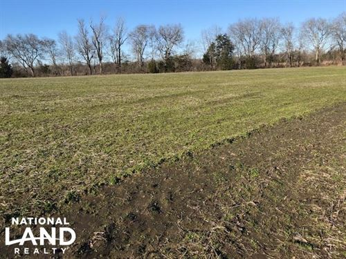 Farmland And Hunting Opportunity : Aberdeen : Monroe County : Mississippi