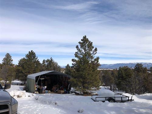 Home Out Buildings Foor Sale Heron : Los Ojos : Rio Arriba County : New Mexico