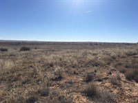 Residential Land Moriarty NM : Moriarty : Torrance County : New Mexico