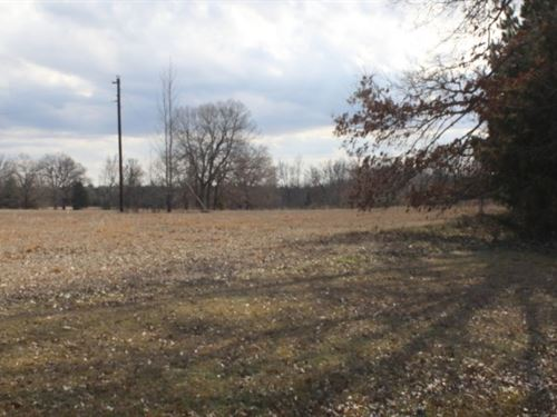 53+ Acres / Private Building Site : Avery : Red River County : Texas