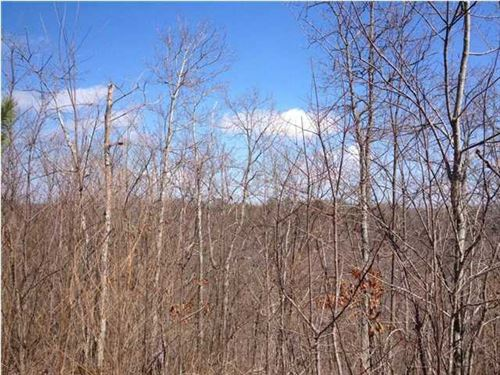 19.3+/-Acres Bring Your Rv W/Creek : South Pittsburg : Marion County : Tennessee