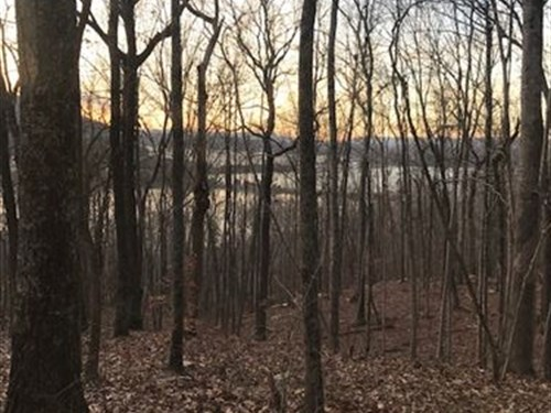 12+/- Acres Lakeview Property : Guild : Marion County : Tennessee