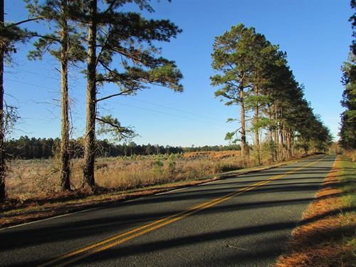 Borden B Tract : Borden : Sumter County : South Carolina