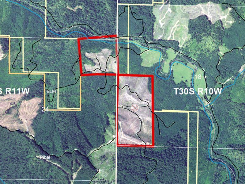 Rassier Creek Iii : Remote : Coos County : Oregon