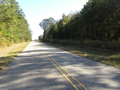 24-049 Lapine Highway Tract : Grady : Crenshaw County : Alabama