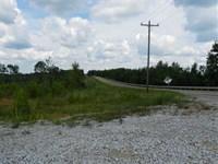 677 Acres, Pocahontas, McNairy : Pocahontas : McNairy County : Tennessee