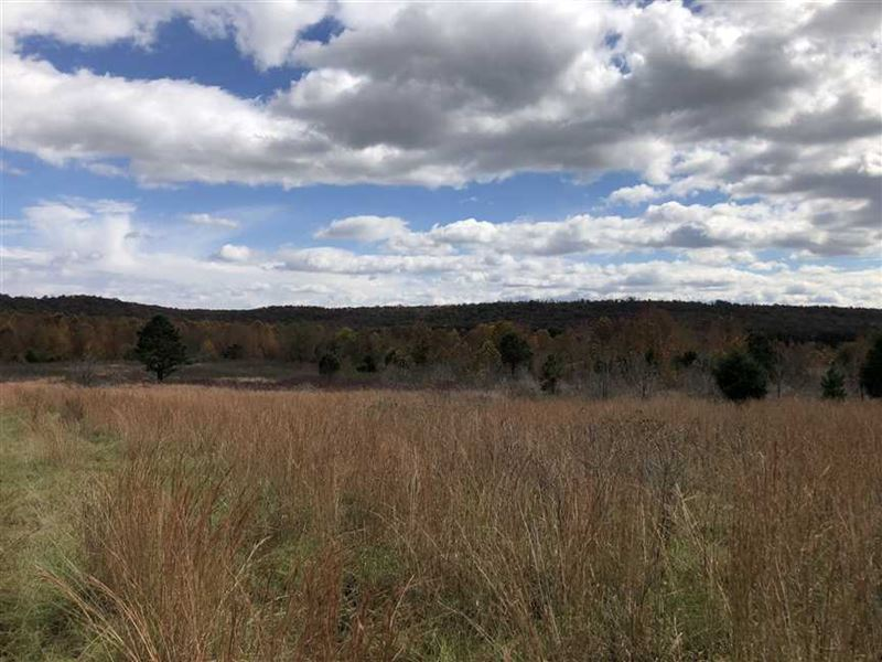 95 Acres South of Floyd Pasture : Land for Sale : Floyd : White County :  Arkansas