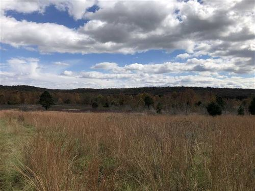 95 Acres South of Floyd Pasture : Floyd : White County : Arkansas