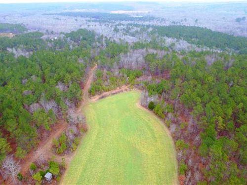 100 Acres in Shottsville : Shottsville : Marion County : Alabama