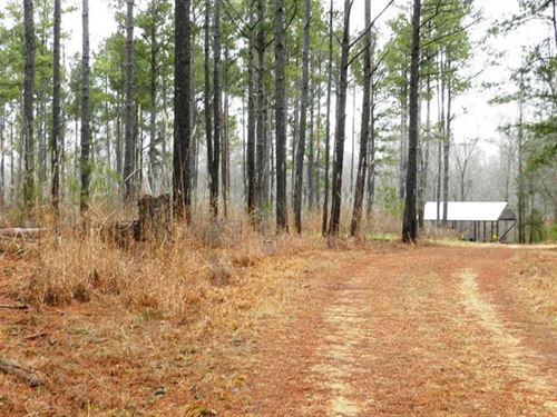 452 Acres Bull Mountain Creek : Shottsville : Marion County : Alabama