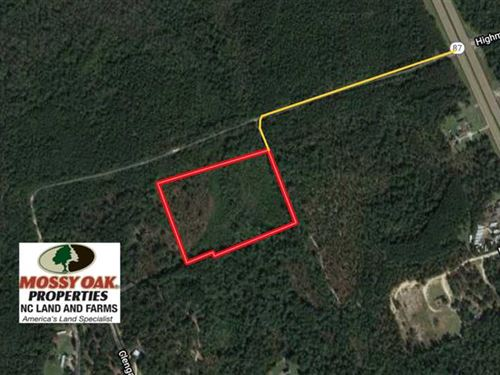 Reduced, 9.9 Acres of Hunting Lan : Cameron : Harnett County : North Carolina