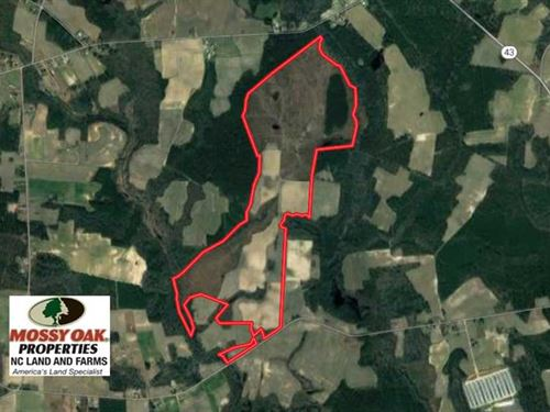 Reduced, 312 Acres of Farm And Hu : Macclesfield : Edgecombe County : North Carolina