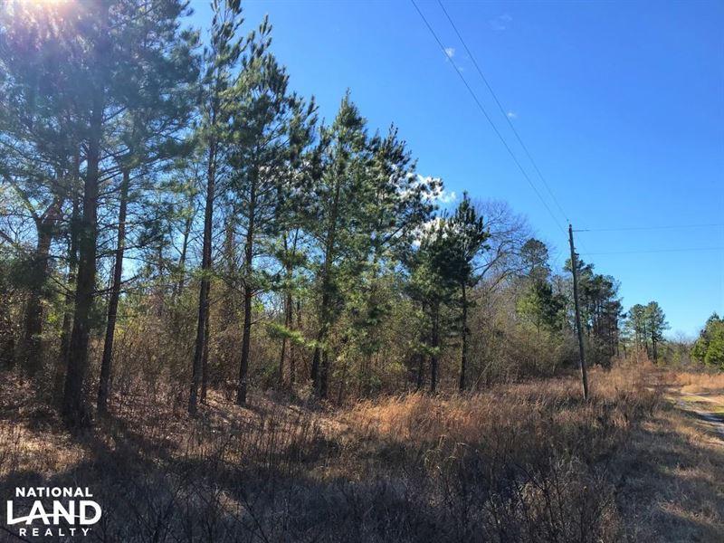 Rolling Oaks Residential Lots : Blackville : Barnwell County : South Carolina