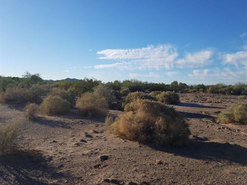 Build You Dreams, Bouse Arizona : Bouse : La Paz County : Arizona