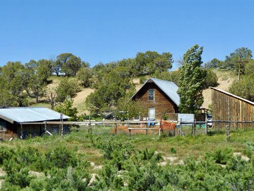 Farm House 37 Acres Located Base : Cortez : Montezuma County : Colorado