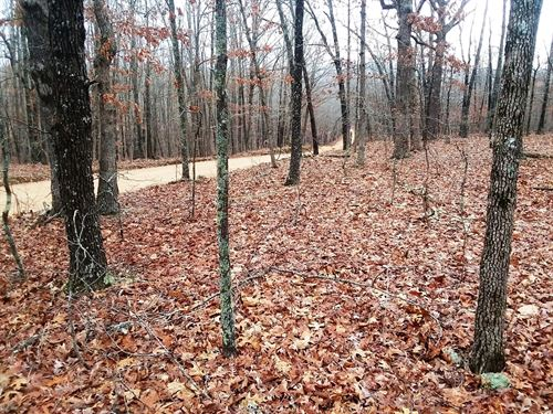 30 Acres of Woods Close to Town : Willow Springs : Howell County : Missouri