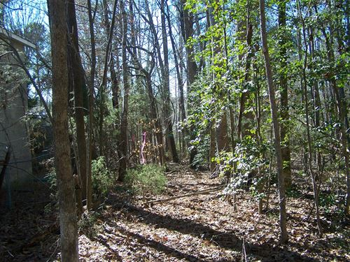 Country Building Lot Only 4 Miles : Great Falls : Chester County : South Carolina