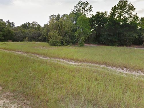 .38 Acre Residential Lot : Bellview : Marion County : Florida