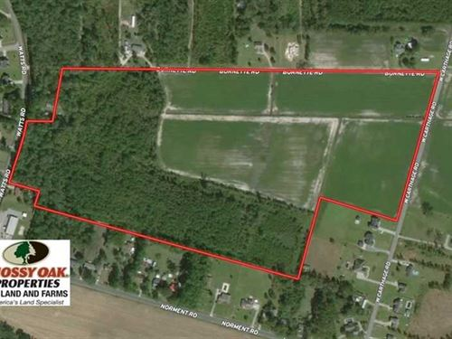 Under Contract, 58 Acres of Farm : Lumberton : Robeson County : North Carolina