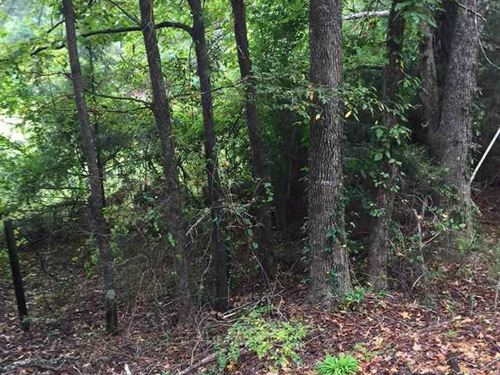 Utica 40 Acre Hunting & Timber : Utica : Hinds County : Mississippi