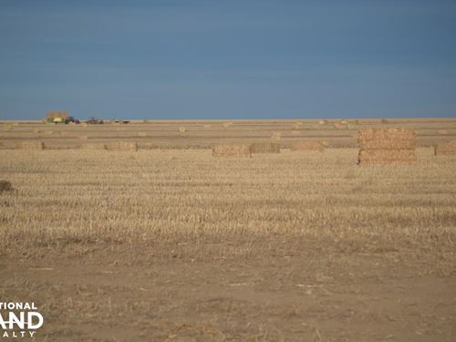 Dry Land Farm Ground For Sale Walla : Wallace : Kansas