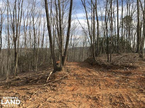 Alexander County Timber And Hunting : Taylorsville : Alexander County : North Carolina