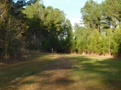 1,050 Acres In Rankin County In Puc : Puckett : Rankin County : Mississippi