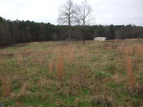 Auction, Property 1222 : Newnan : Coweta County : Georgia