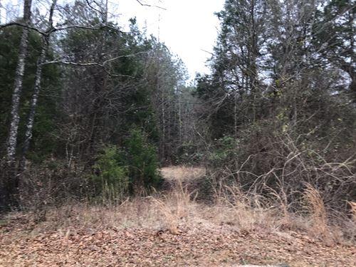 Recreational Hunting Retreat : Enoree : Spartanburg County : South Carolina