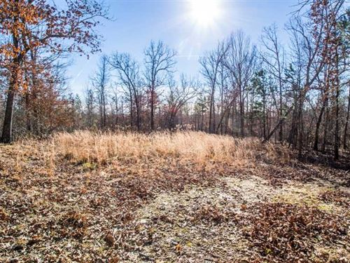 60 Acres For Sale in Ripley County : Doniphan : Ripley County : Missouri