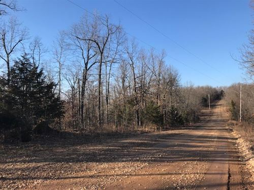Wooded Acreage Private Setting Bull : Harrison : Boone County : Arkansas