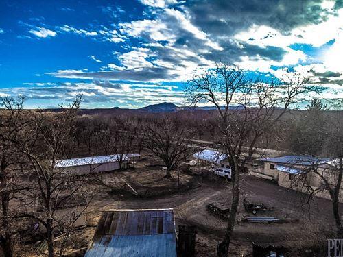 Pecan Farm Hatch Nm, Farm Nm, Farm : Hatch : Dona Ana County : New Mexico
