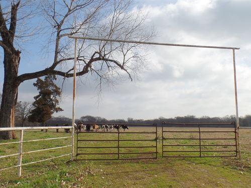 35 East Texas Acres, Wood County : Yantis : Wood County : Texas