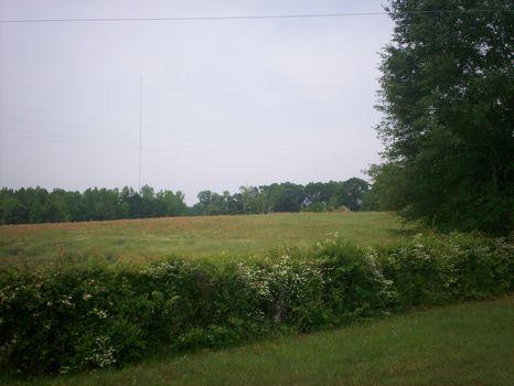 Beautiful 3.7 Acre Lot w/ Pond Site : Troy : Montgomery County : Alabama