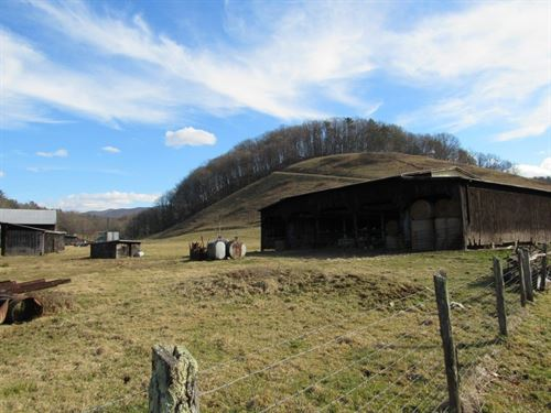 Hobby Farm For Sale In Chilhowie VA : Chilhowie : Smyth County : Virginia