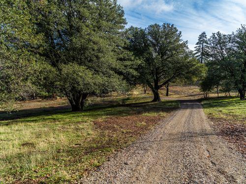 Pine Hills Acreage : Julian : San Diego County : California