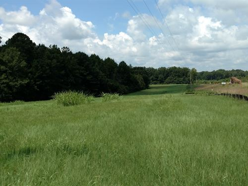 Beautiful Pasture & Mature Timber : Lexington : Wilkes County : Georgia