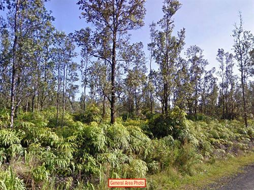.18 Acre Lot In Nanawale Estates : Nanawale Estates : Hawaii County : Hawaii