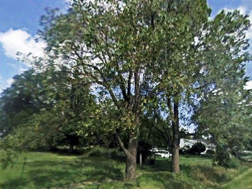 .92 Acre Lot In Doughtery : Doughtery : Cerro Gordo County : Iowa