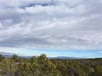 The Ranches at Elk Reserve Lots 21 : Glade Park : Mesa County : Colorado