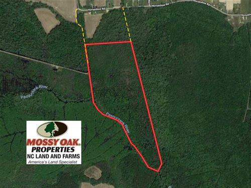 58.83 Acres of Riverfront Hunting : South Mills : Camden County : North Carolina