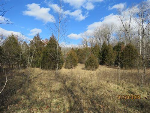 Small Acreage in Douglas CO : Ava : Douglas County : Missouri