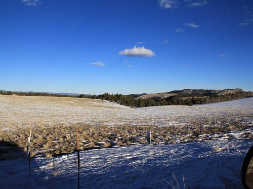 35.220 Acres in Fremont County : Canon City : Custer County : Colorado