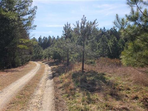 15 Acres in Rock Hill, Chester Cou : Rock Hill : Chester County : South Carolina