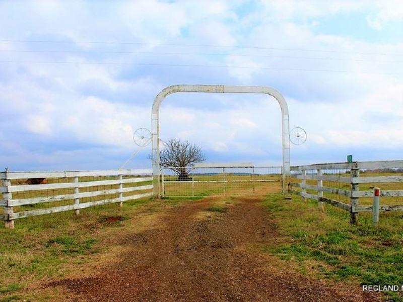 256 Ac, Working Cattle Ranch, Pri : Milam : Sabine County : Texas