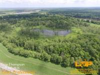60.8 Acres Moreau Lake : Marksville : Avoyelles Parish : Louisiana
