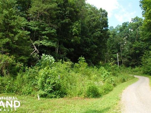 Private Residential Lot : Cosby : Cocke County : Tennessee