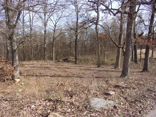 Vacant Land City Lot Town : Pocahontas : Randolph County : Arkansas