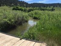 Will Ranch : Sundance : Crook County : Wyoming